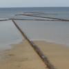 Tunisie à Kerkennah, des méthodes de pêche traditionnelles soutenues par Slow Food